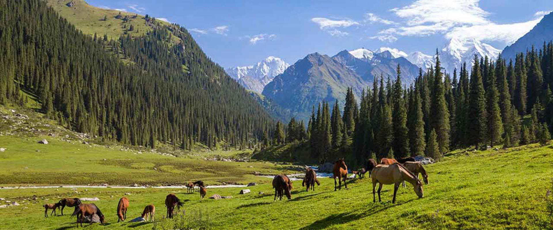 Panoramas époustouflants du Kirghizstan